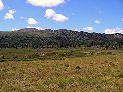 Конный поход на плато Укок : Долина реки Чиндагадуй