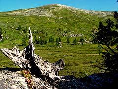 Конный поход на плато Укок : В долине реки Кара-Алаха