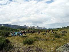 Конный поход на плато Укок : На стоянке
