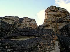 Конный поход на плато Укок : Сокол, парящий над скалами