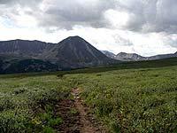 Горный Алтай : Поход от Чемала до Телецкого (лето 2007) : Тропа по болоту