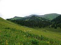 Горный Алтай : Поход от Чемала до Телецкого (лето 2007) : Плотина на Южеме