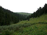 Горный Алтай : Поход от Чемала до Телецкого (лето 2007) : Карасу-Аксазкан