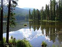 Горный Алтай : Поход от Чемала до Телецкого (лето 2007) : Лесное озеро