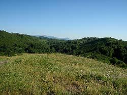Рудный Алтай : Горная Колывань : На отрогах Тигирекского хребта