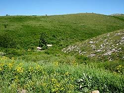 Горный Алтай : Велопоход «Два Алтая» : Пасека в районе Чинеты