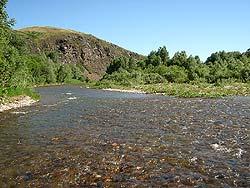 Горный Алтай : Велопоход «Два Алтая» : Река Белая