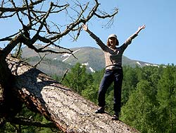 Горный Алтай : Велопоход «Два Алтая» : Люблю лазать по деревьям!