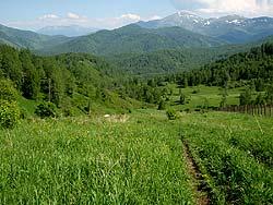 Горный Алтай : Велопоход «Два Алтая» : Вид на Коргонский хребет