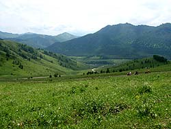 Горный Алтай : Велопоход «Два Алтая» : Перевал Сентелек