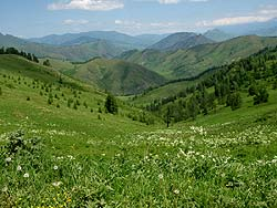 Горный Алтай : Велопоход «Два Алтая» : Вид с перевала
