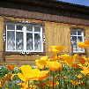 Усадьба Уютный домик