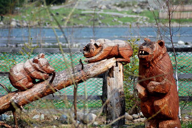 """Горный Алтай : Турбаза  """"Золотая рыбка """" : Три медведя."""